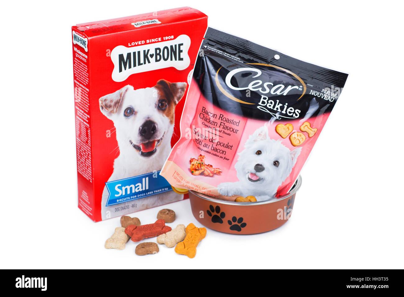 Hund behandelt, Milch Knochen und Cesar Bakies Pakete, Pakete Stockbild