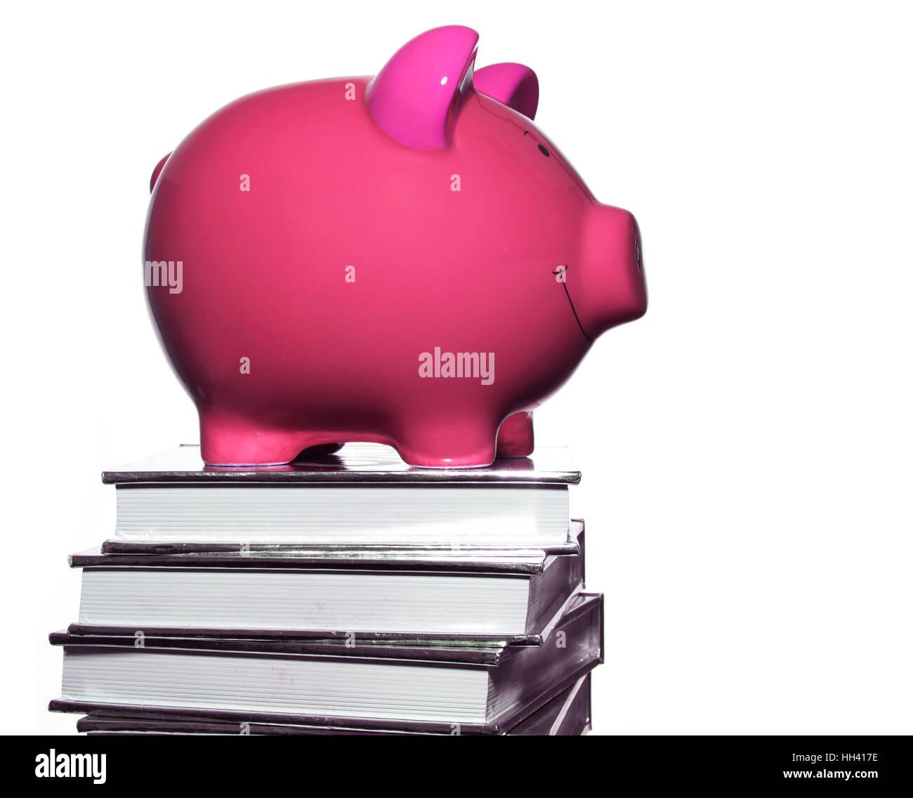 Rosa Sparschwein auf Buch Haufen Stockbild