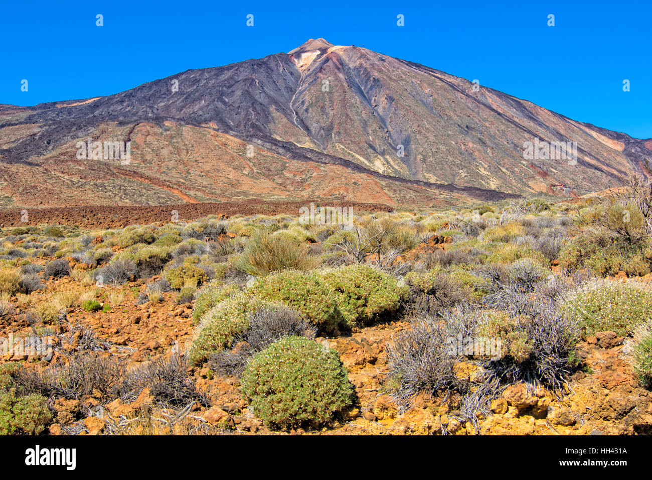 Mount Teide im Teide-Nationalpark, Teneriffa Stockbild