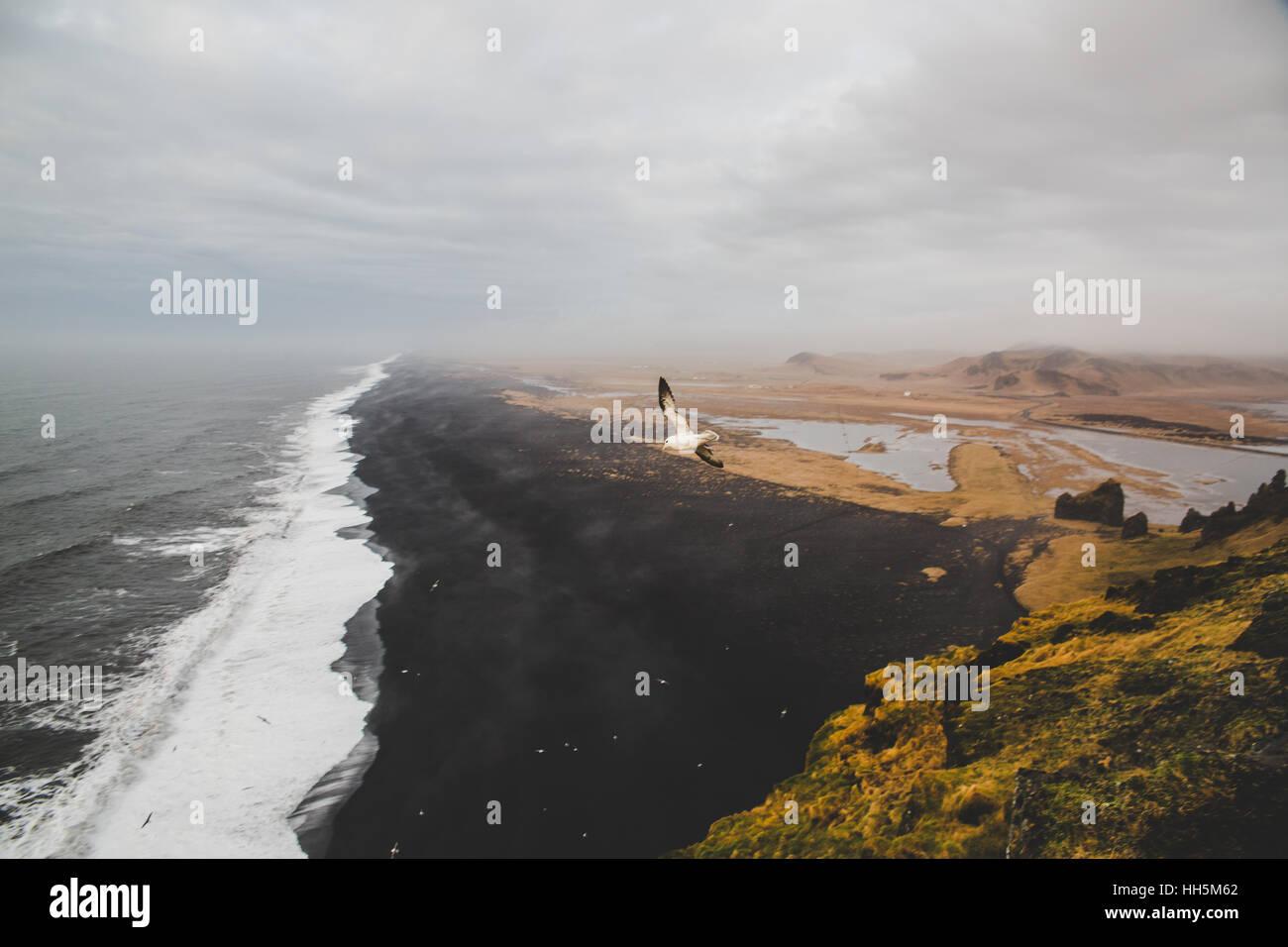 Island im winter Stockbild