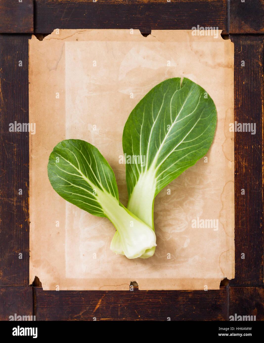 Pak Choi Gemüse auf dem vergilbten Papier in einem Alter Holz ...