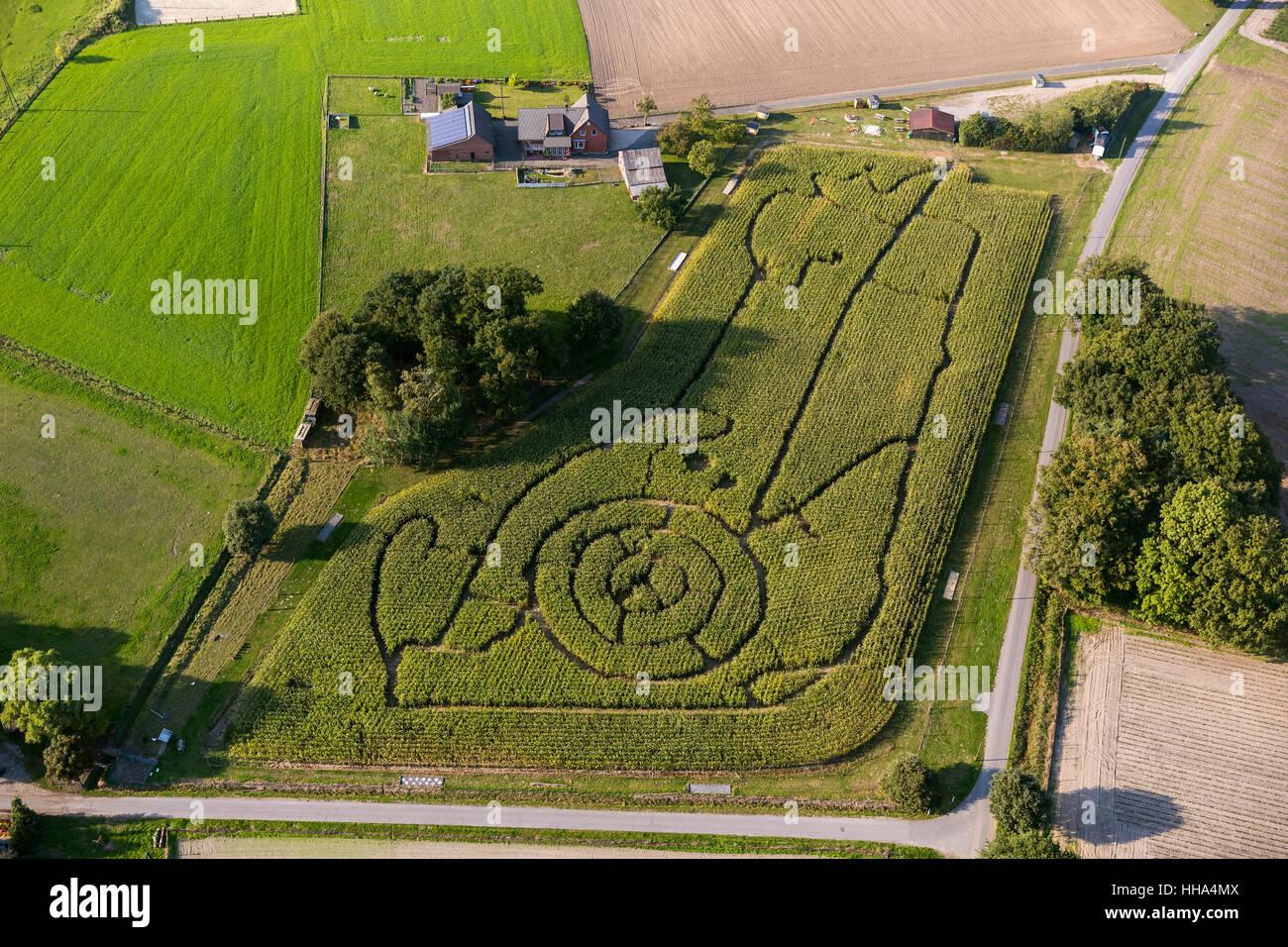 Maislabyrinth in Form von einem Cartoon Charakter Bauernschaft Brackenberg Besten, Schermbeck, Ruhrgebiet, Nordrhein Stockbild