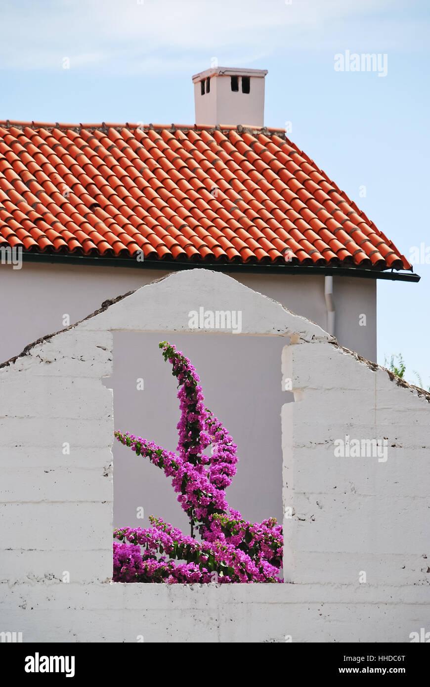 Haus Gebaude Fenster Bullauge Dachfenster Fenster Wand