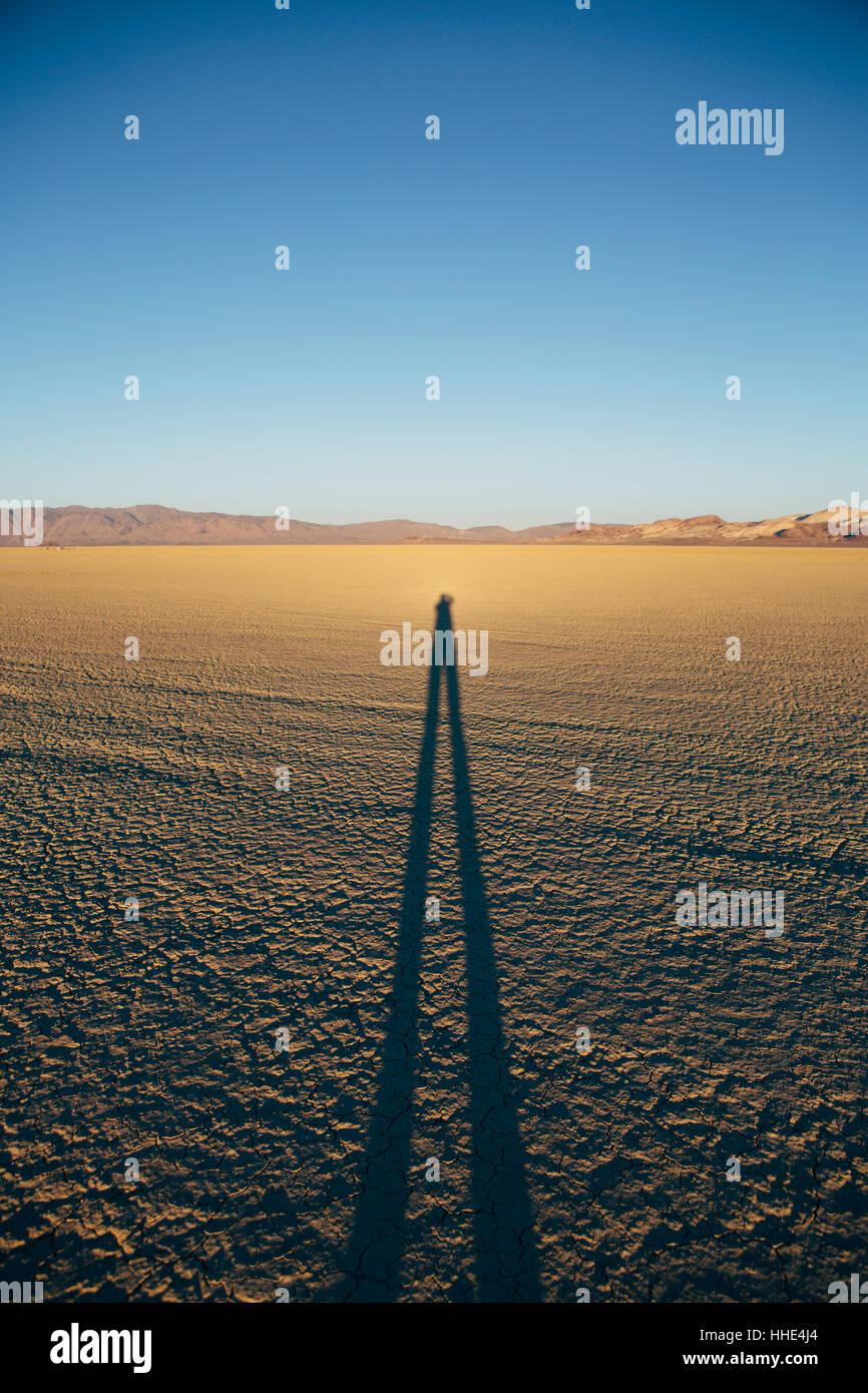 Mann steht auf Black Rock Desert Playa in der Abenddämmerung, wirft lange Schatten, Nevada Stockbild
