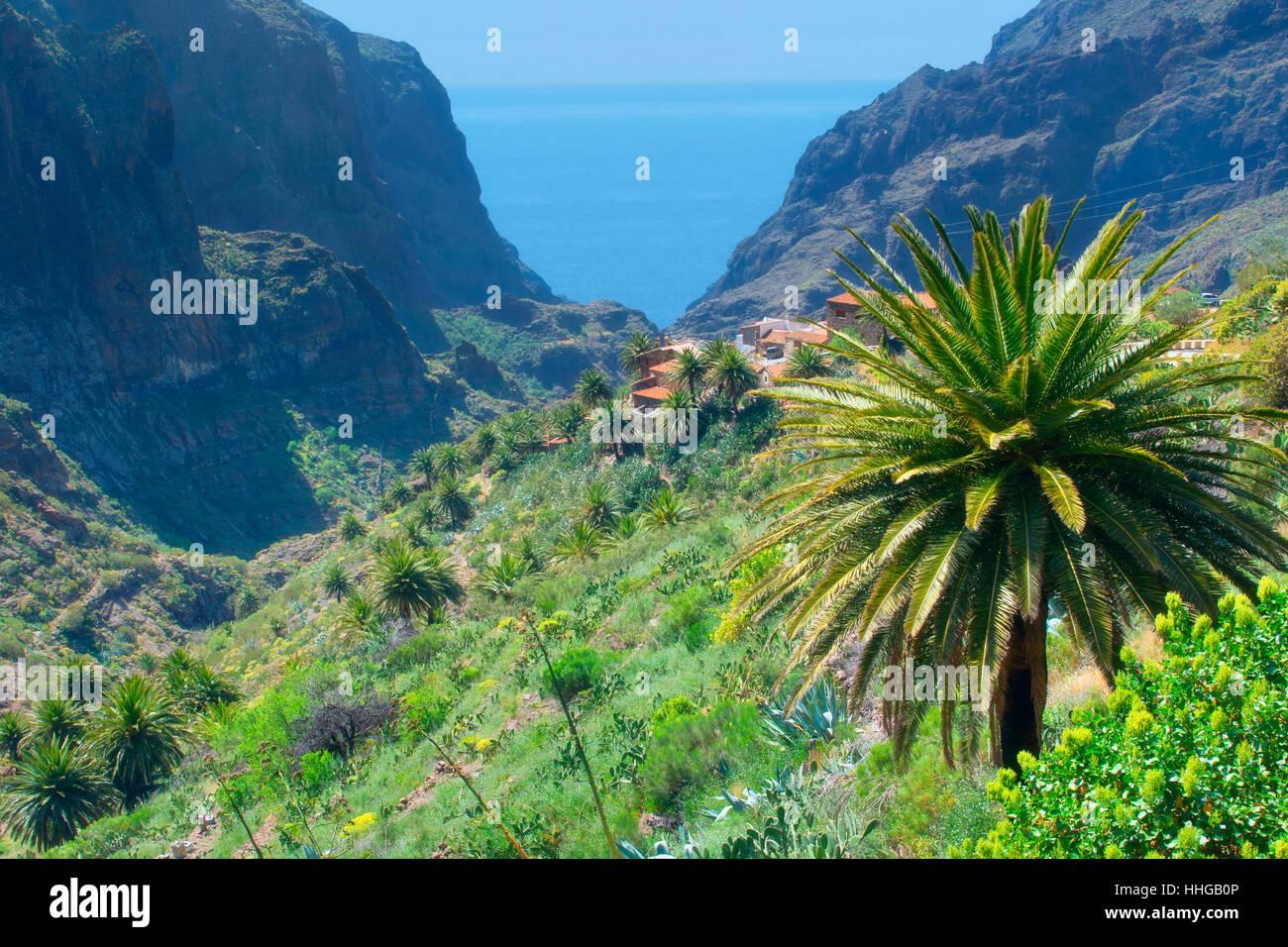 Das Dorf Masca, Teneriffa Stockbild