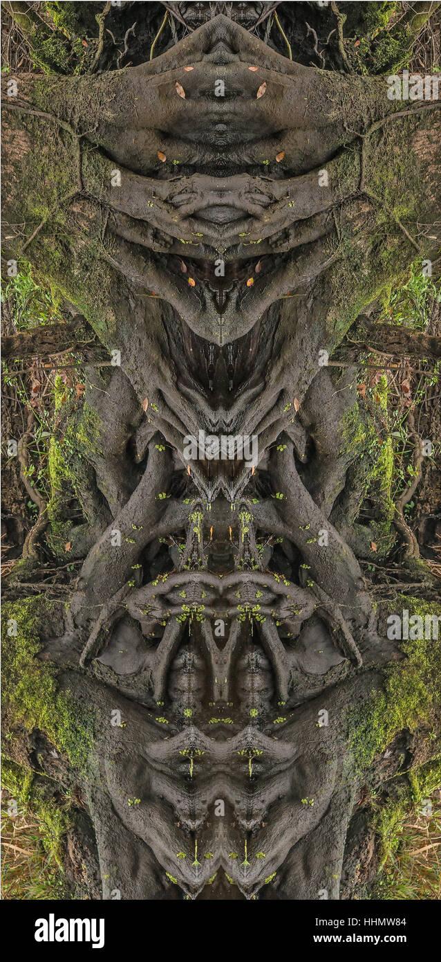Bild der Wurzel Masse verschmolzen mit seinem Spiegelbild eine bilaterale Symmetrie zeigt seltsame Gesicht-artige Stockfoto