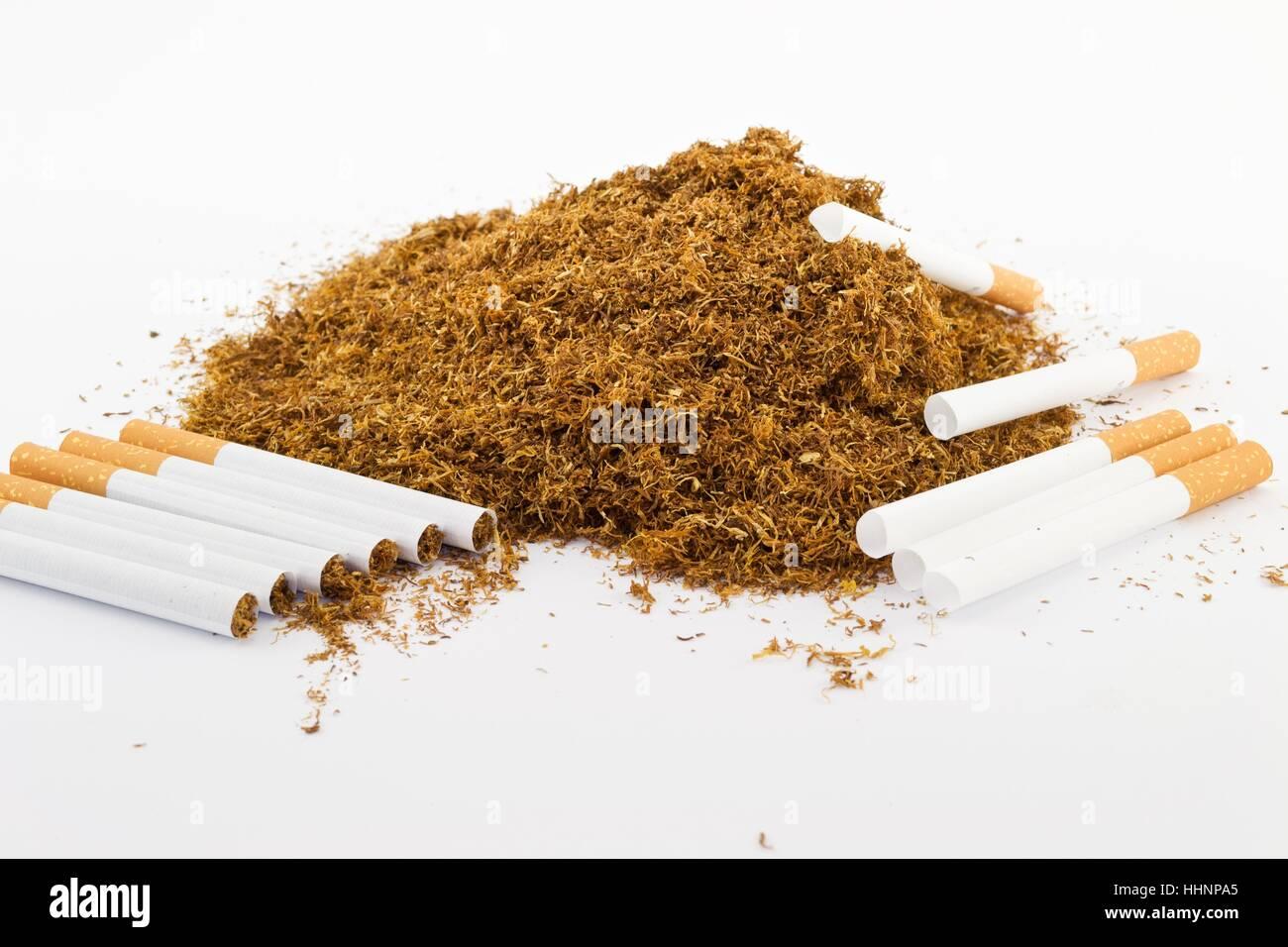 Nikotin Schädlich