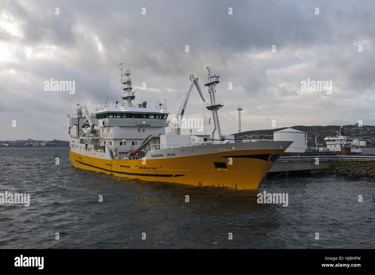 Shetland pelagischen Trawler entladen Fang von Makrelen in Lerwick. Oktober 2012. Stockbild