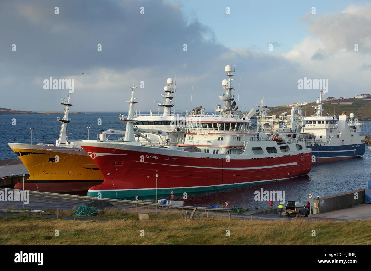Hochseetrawler (L, R) Charisma, heiter und Zephyr im Hafen von Symbister, Insel Whalsay, Shetland. Oktober 2012. Stockbild