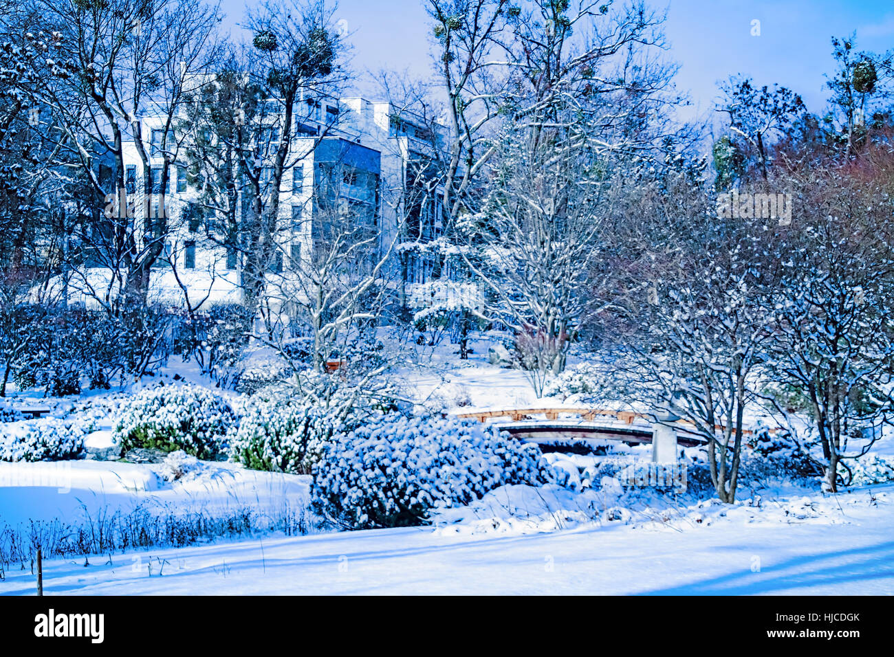setagaya park vienna ein japanischer garten im winter stockfoto bild 131810467 alamy. Black Bedroom Furniture Sets. Home Design Ideas