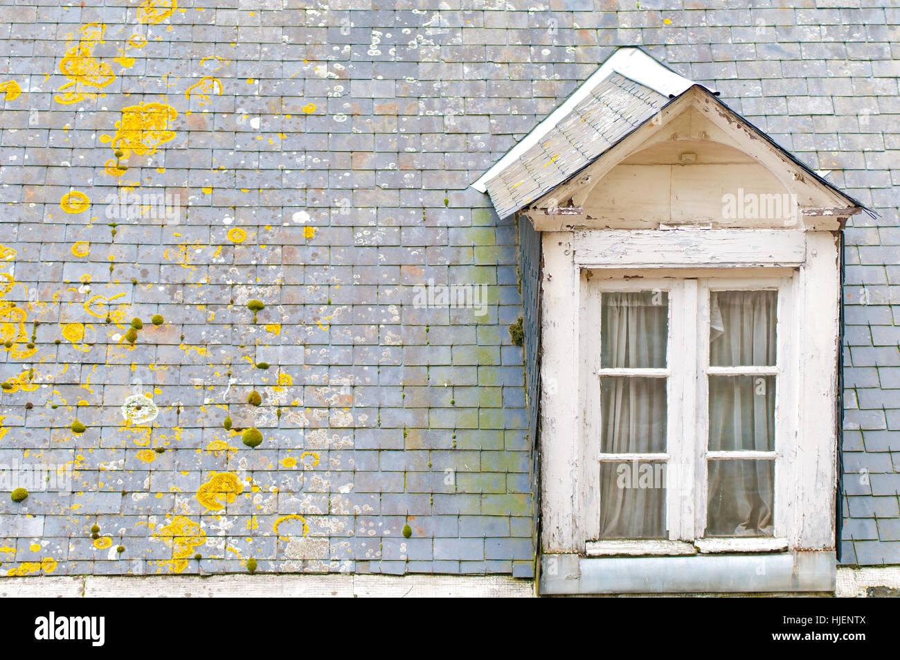 Haus Gebaude Detail Fenster Bullauge Dachfenster Fenster Holz