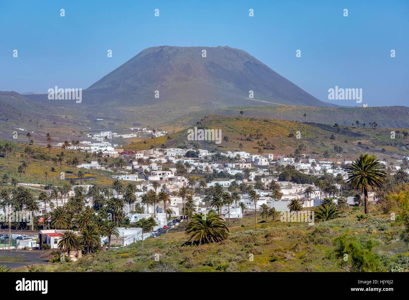 Haria, Tal der 1000 Palmen, Lanzarote, Kanarische Inseln, Spanien Stockbild