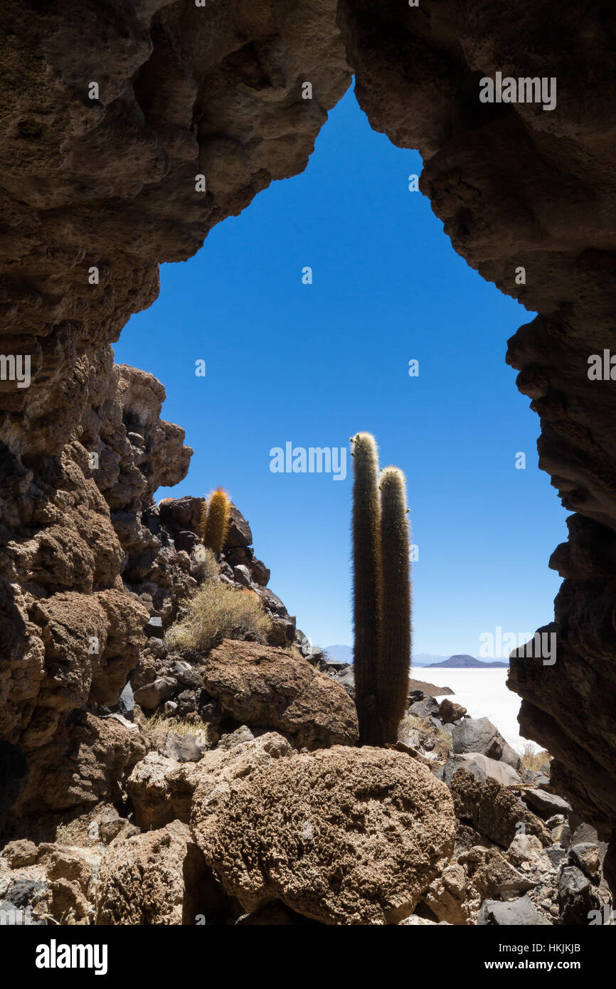Höhle bei Isla Pia Pia, Salar de Uyuni, Bolivien Stockbild