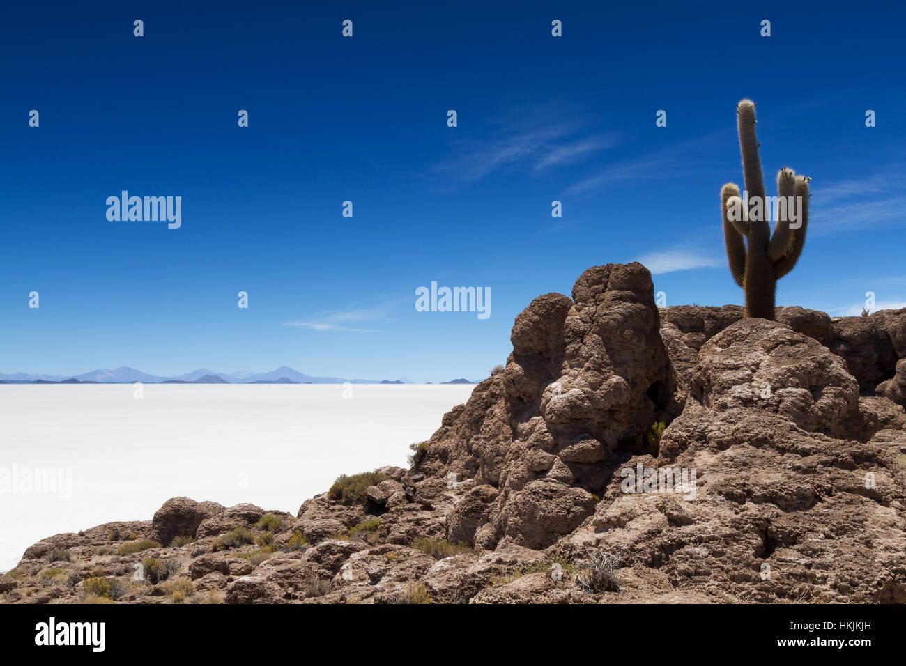 Aussichtspunkt Isla Pia Pia, Salar de Uyuni, Bolivien Stockbild