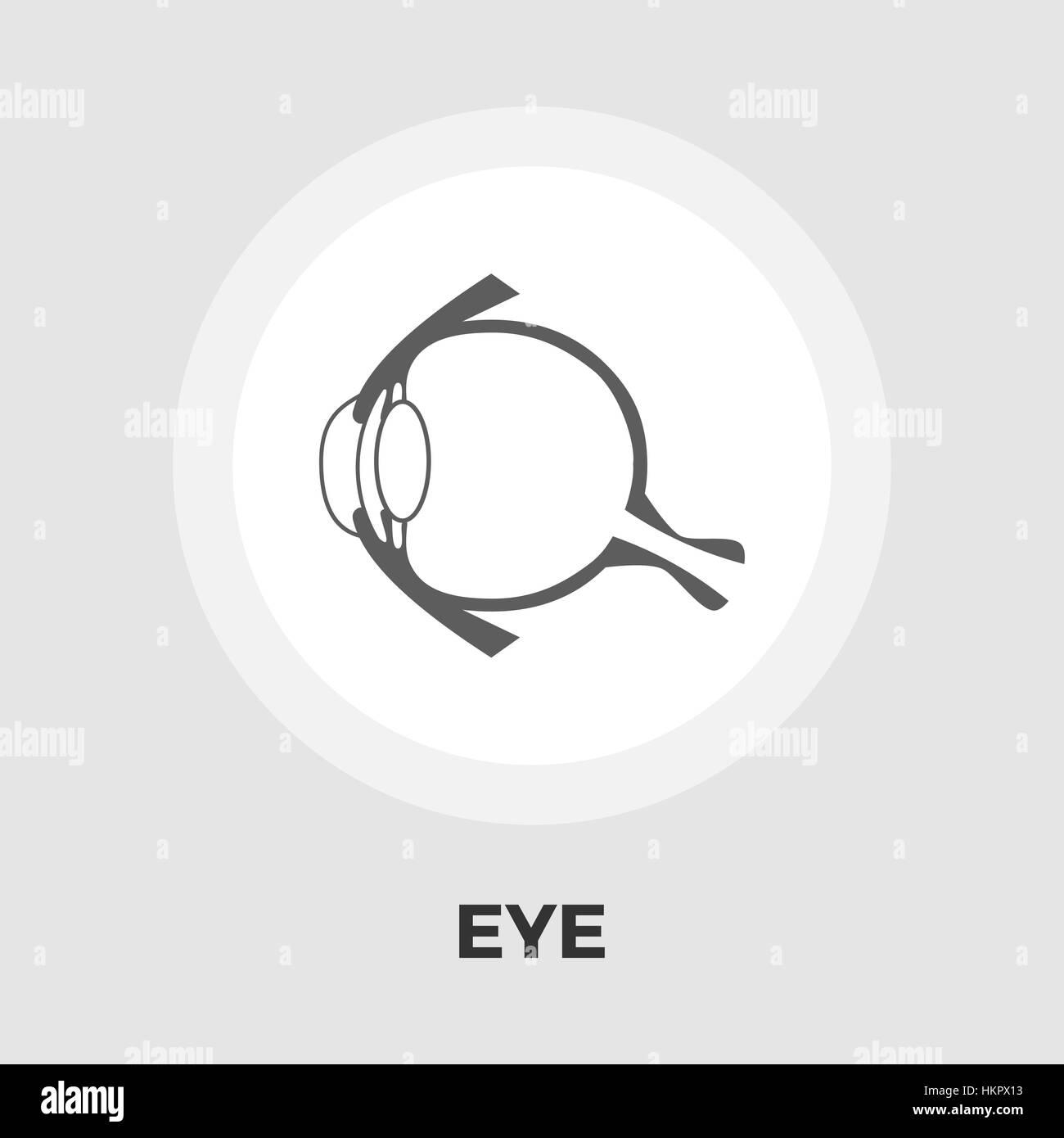 Tolle Normale Auge Anatomie Galerie - Menschliche Anatomie Bilder ...