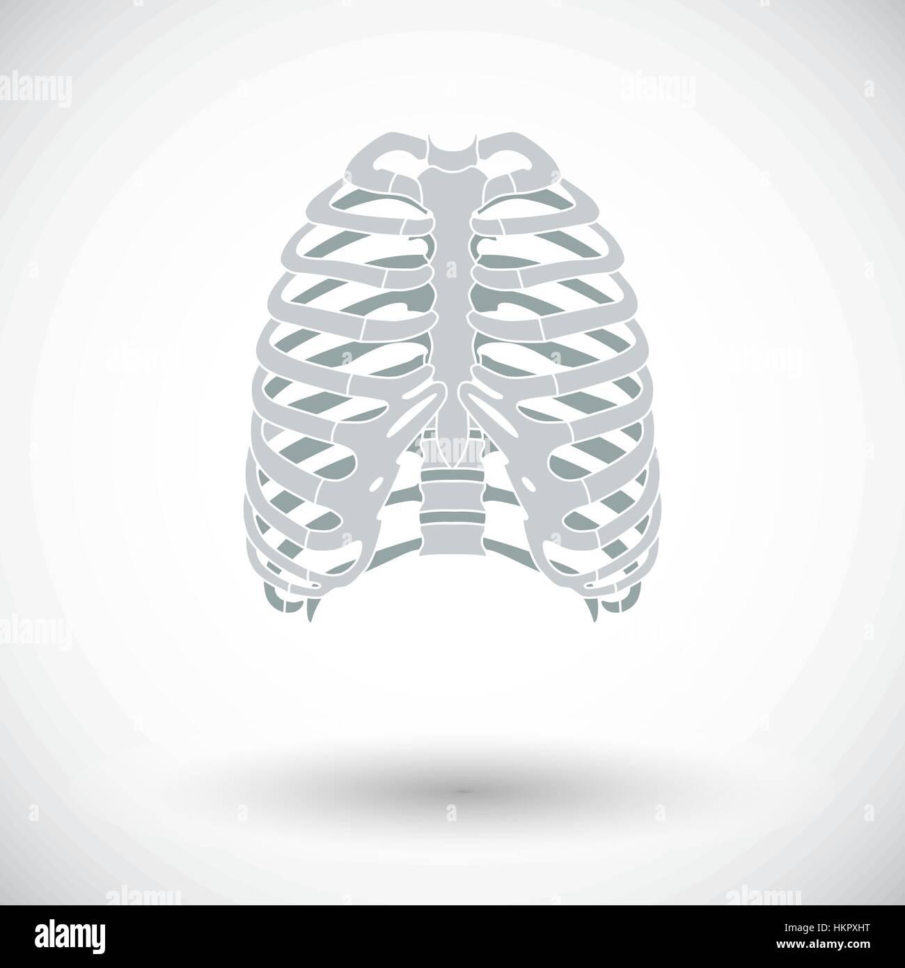Body Sternum Stockfotos & Body Sternum Bilder - Seite 2 - Alamy