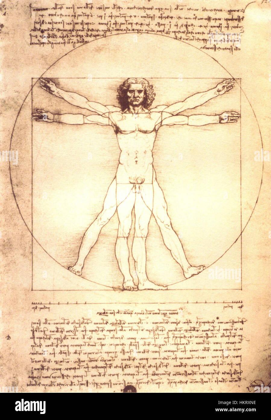 Da Vincis anatomische Mann Stockfoto, Bild: 132676922 - Alamy