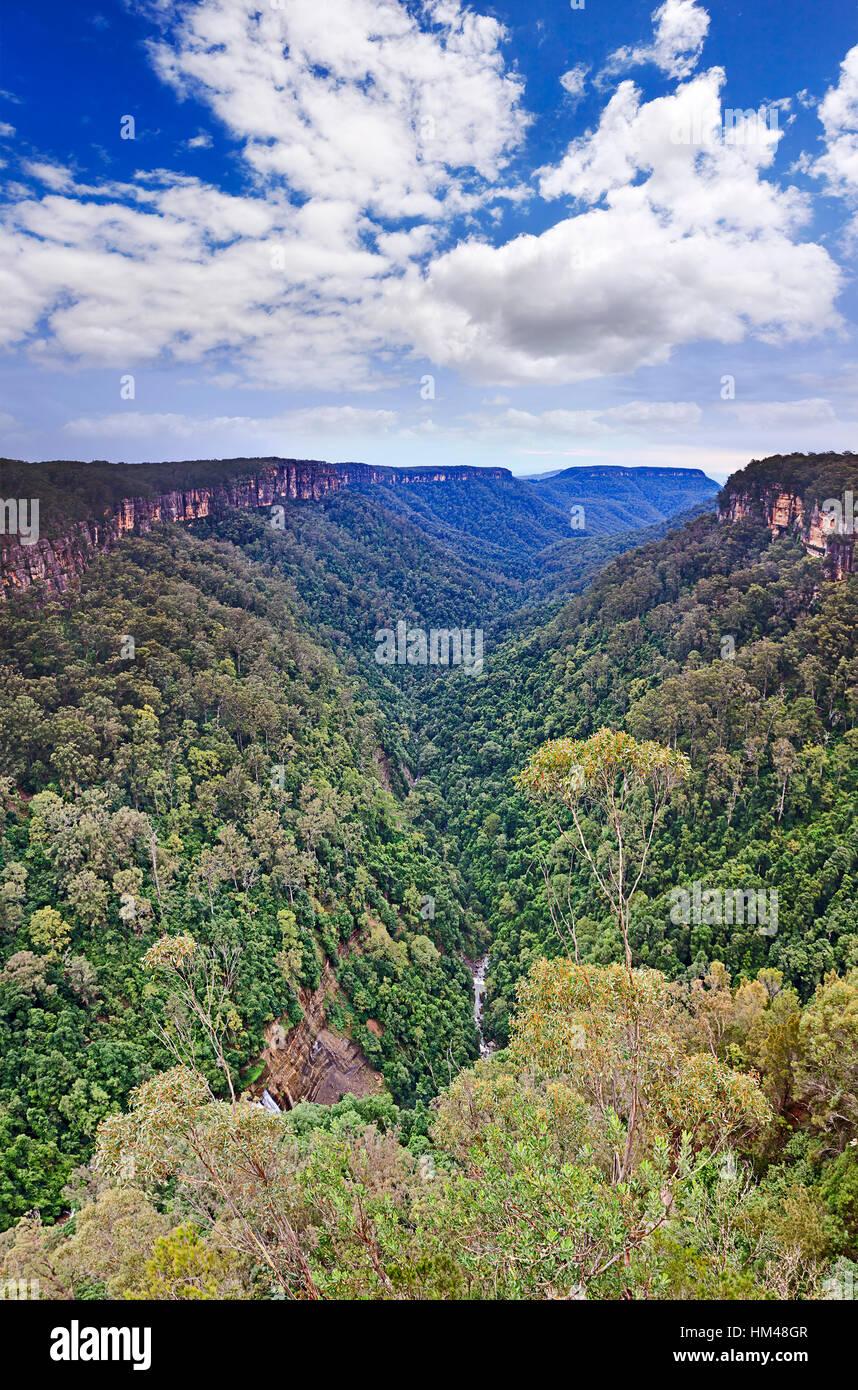 Vertikale Ansicht Yarrunga Tal in Morton Nationalpark der Great Dividing Range in Australien. Immergrüne Wälder Stockbild