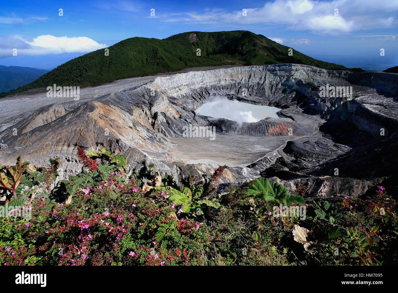 Krater des Poás Vulkan, Alajuela, Costa Rica Stockbild