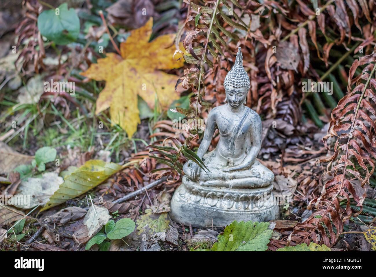 Eine Statue von Buddha sitzt in einem Garten im Herbst, umgeben von Laub und getrockneten Farnwedel. Stockbild