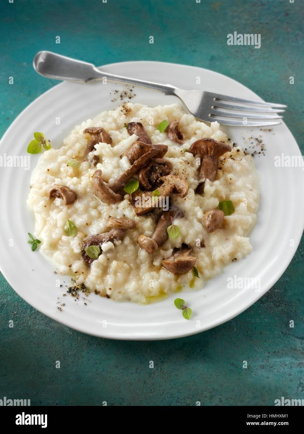 Sautierte Wiild organischer Pied Bleu Pilze (Clitocybe Nuda) oder blauen Fuß Pilze gekocht in Butter und Kräuter Stockfoto
