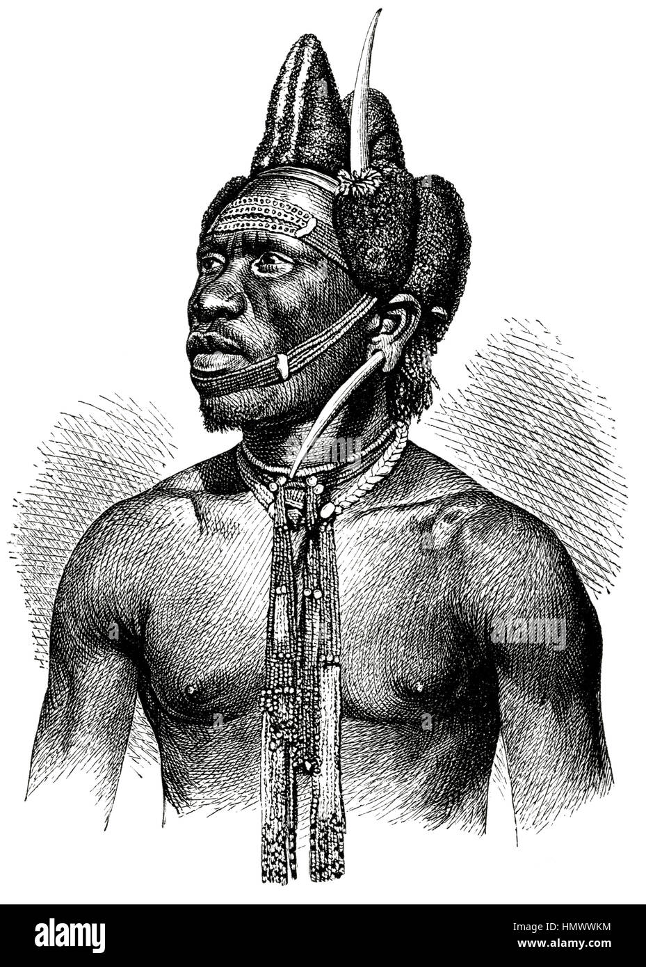 Pondo Krieger, Afrika, Illustration, 1885 Stockbild
