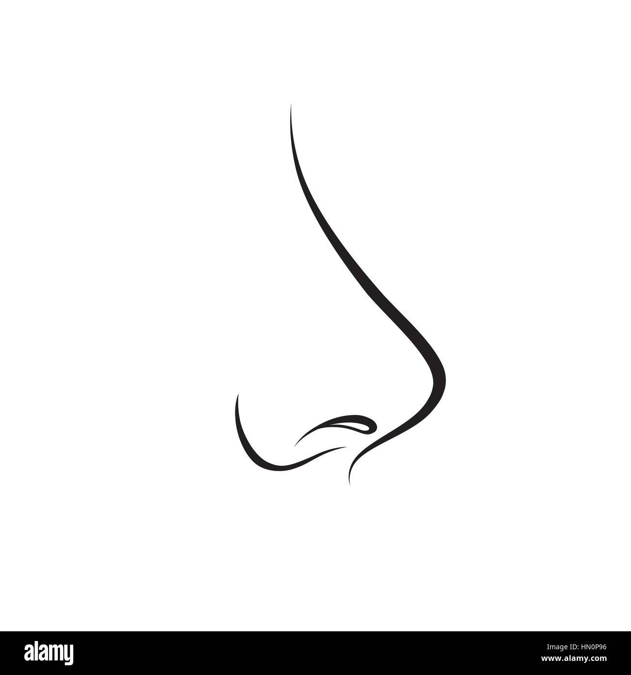 Nase isoliert. menschliche Nase Symbol. Vektor Gravur Abbildung auf ...