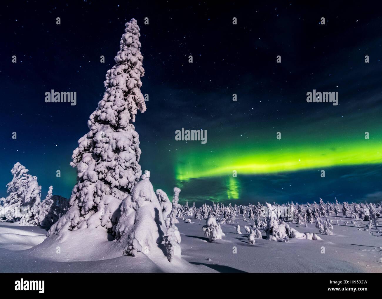 Winternacht im finnischen Lappland Stockbild