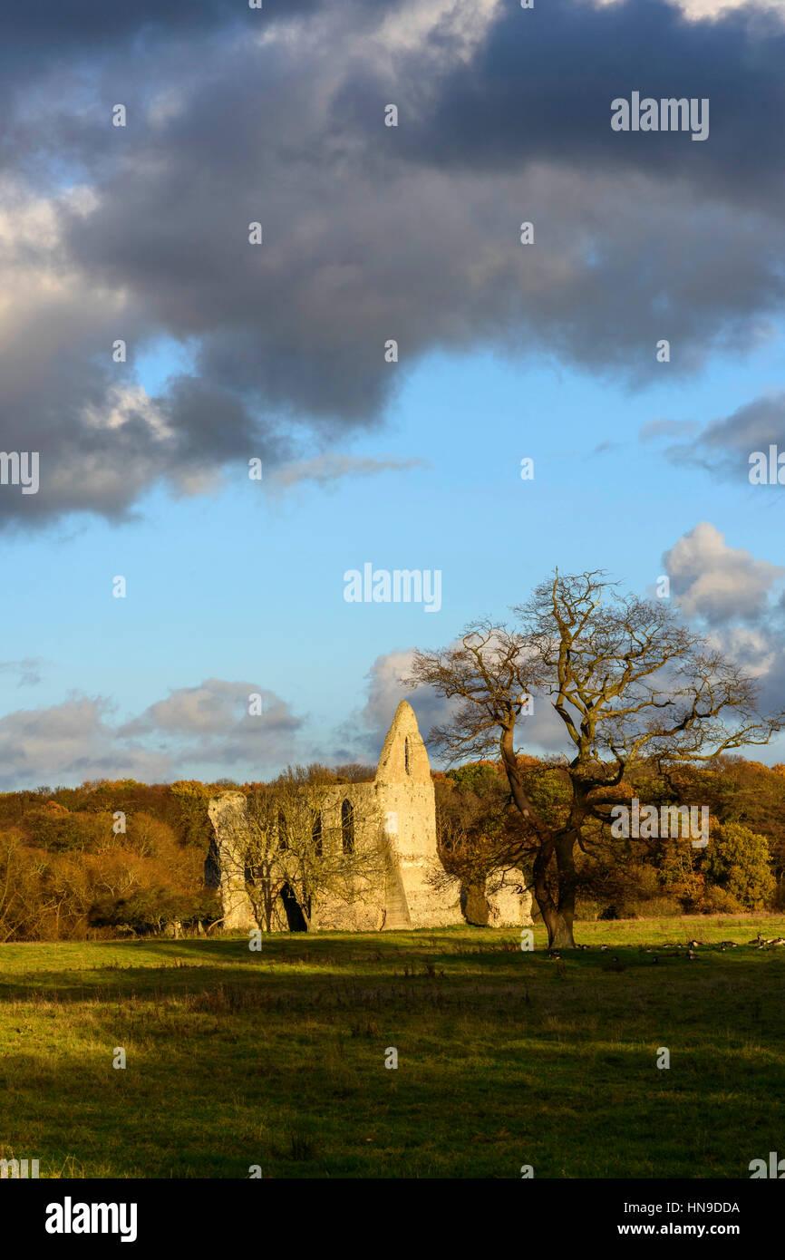 Die Ruinen von Newark Priory, in der Nähe von Ripley, Surrey, England Stockfoto