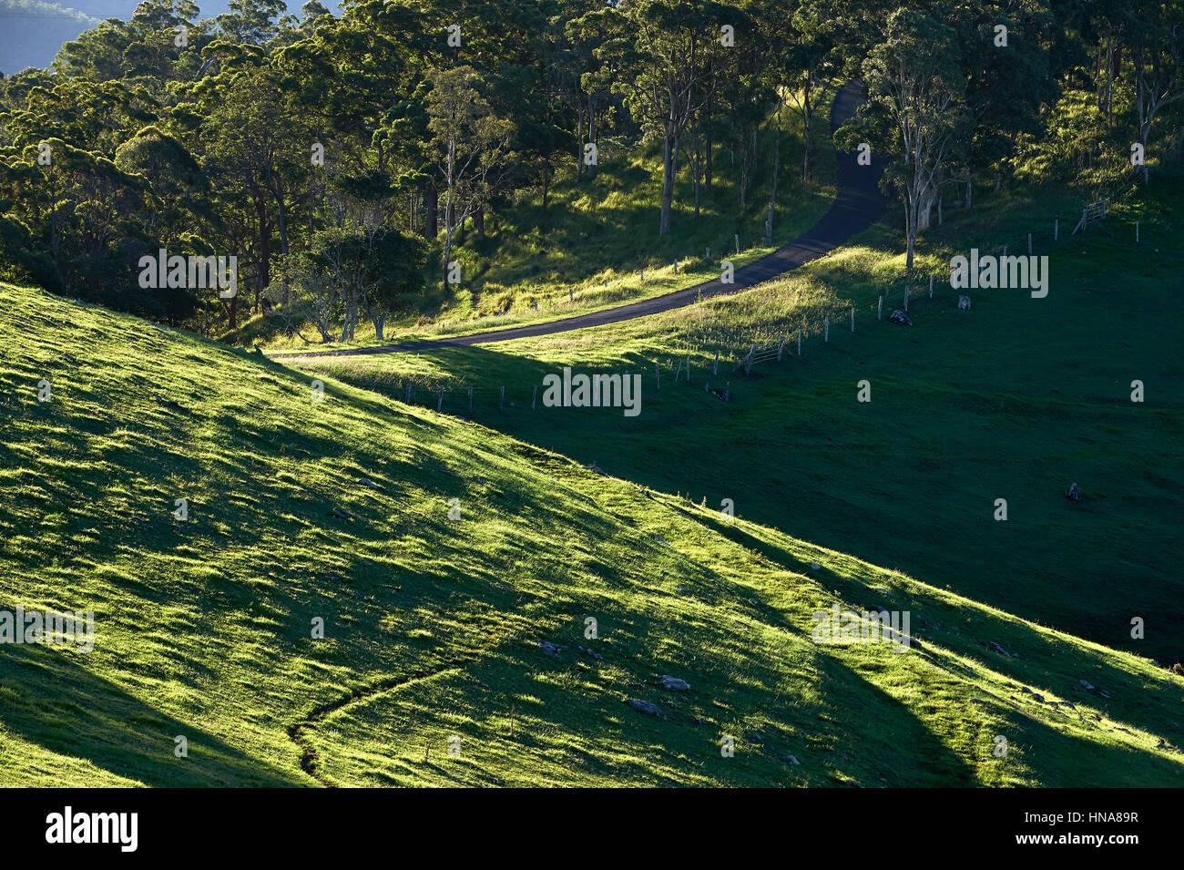 Rollende grüne Weiden mit Bitumen Straße im Hintergrund Stockbild