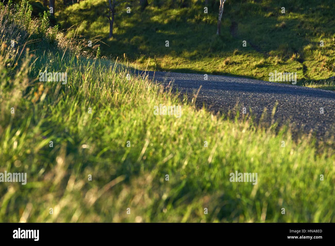 Kleinen Ausschnitt aus Bitumen-Straße in einer ländlichen Umgebung Stockbild