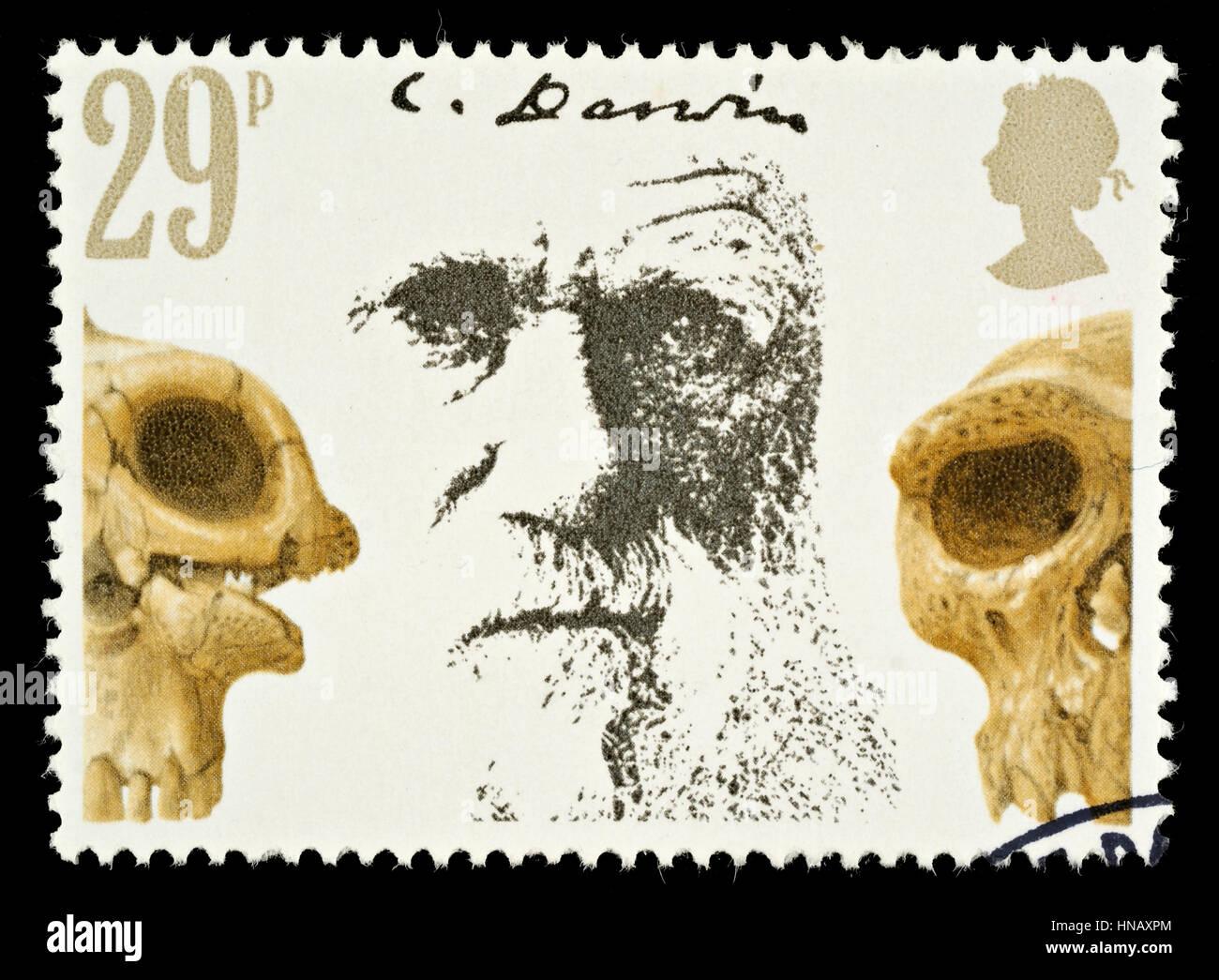 Evolution Theory Stockfotos & Evolution Theory Bilder - Alamy