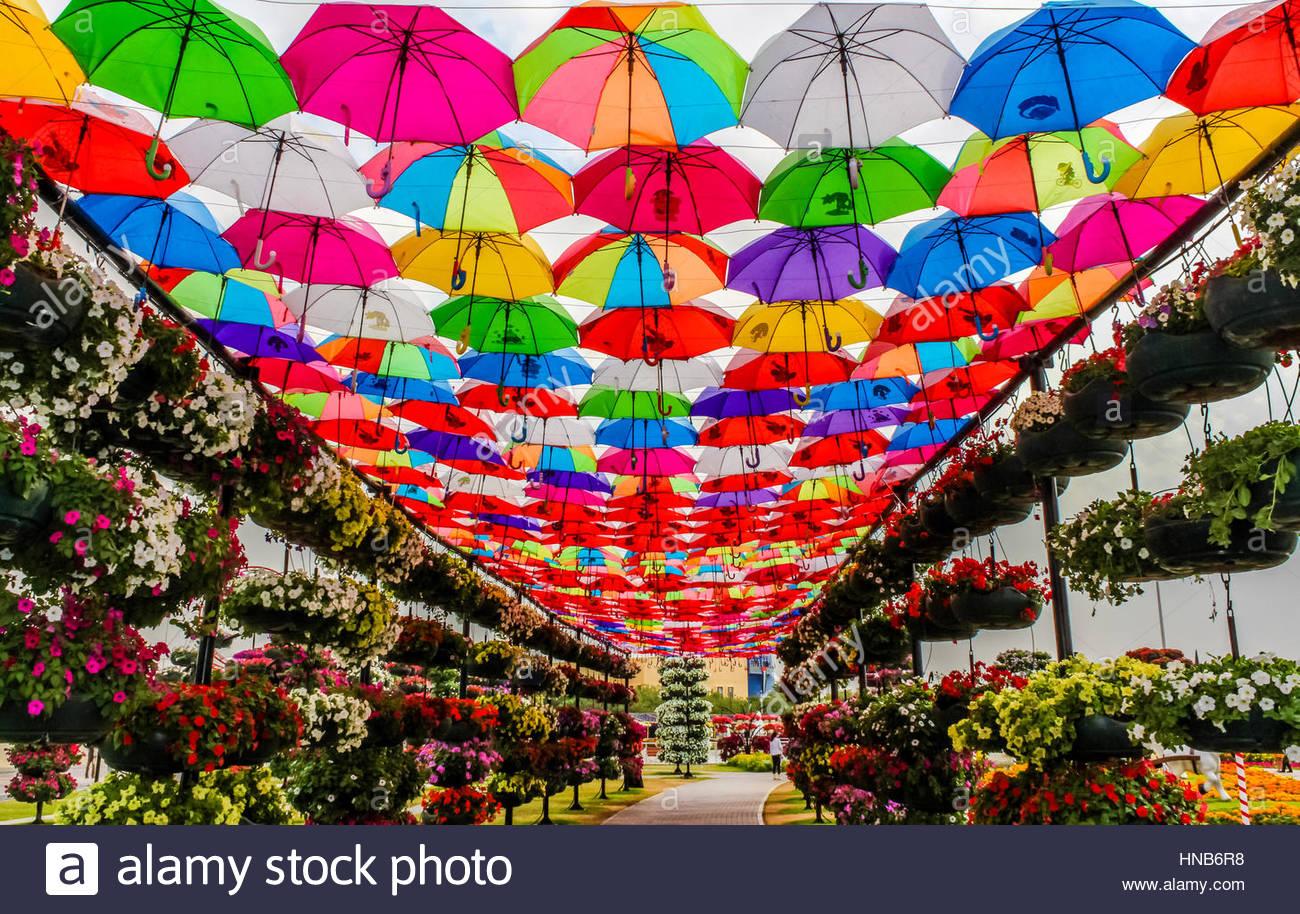 Bunte Regenschirme in Dubai Miracle Garden. Stockbild