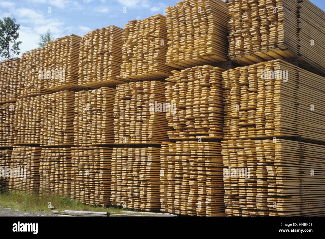 SAWED WOOD PRODUCTS gestapelt zur Trocknung und warten für den export Stockbild