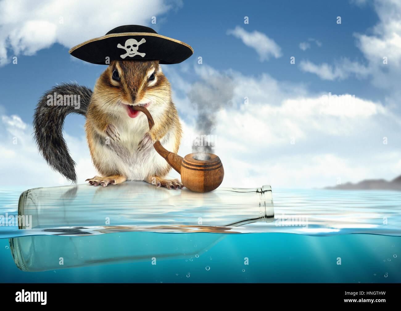 Funny Animal Pirate Stockfotos & Funny Animal Pirate Bilder - Alamy