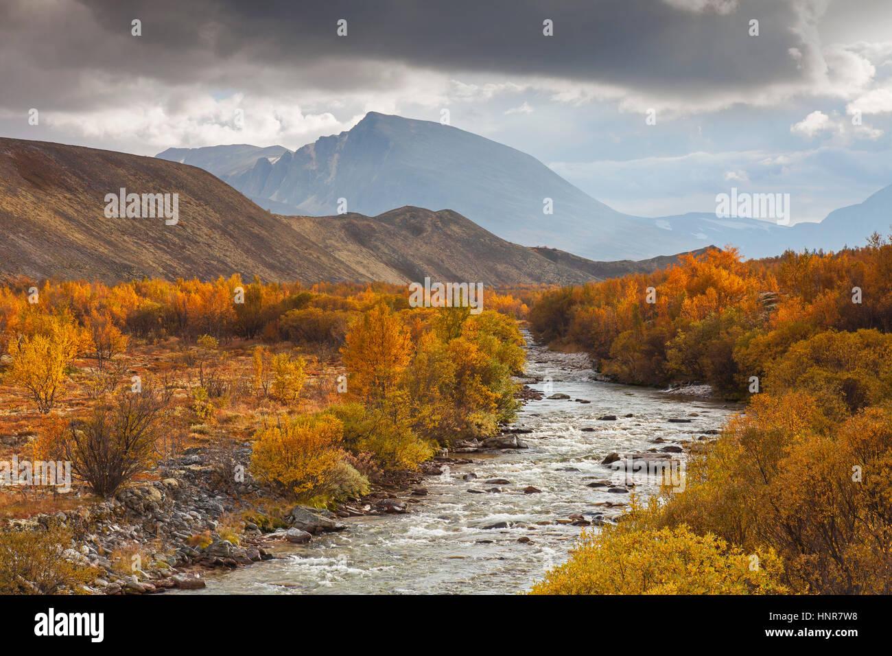 Fluss Atna bei Dørålseter / Doralseter im Rondane Nationalpark in Herbst, Dovre, Norwegen, Skandinavien Stockbild