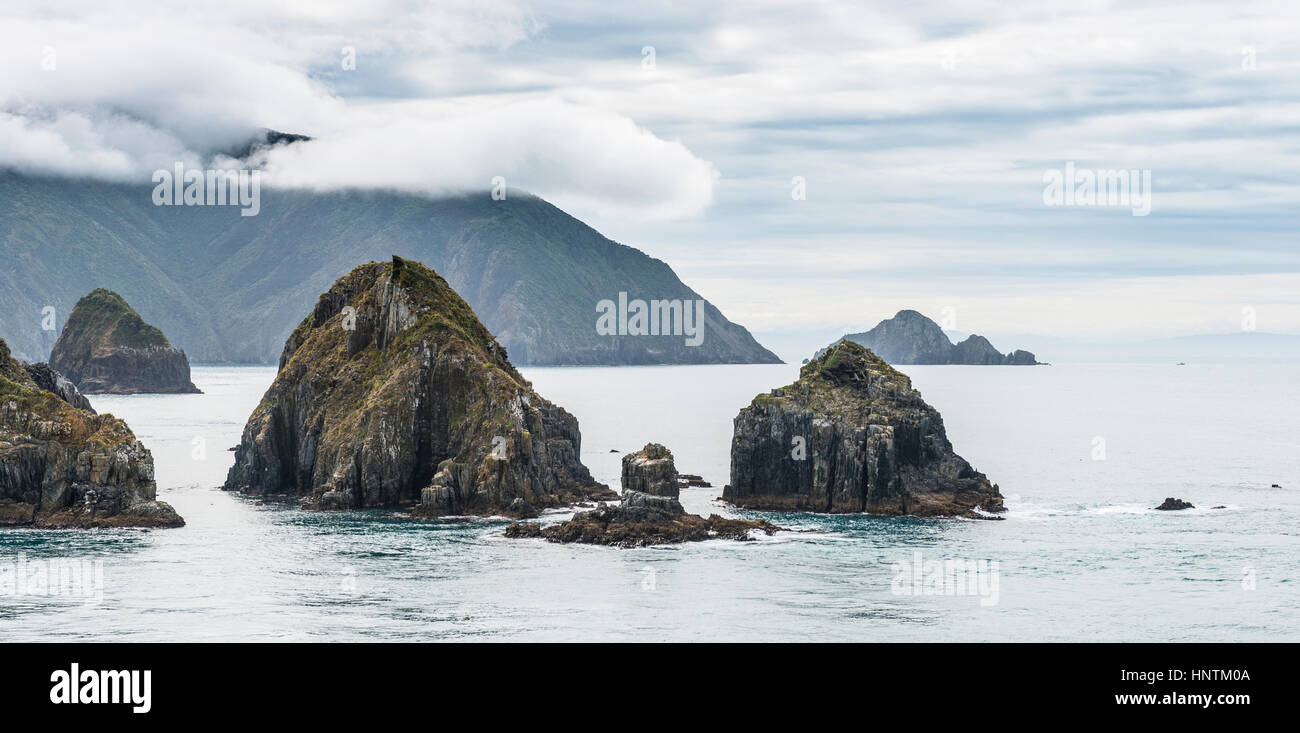 Küste am Meer, bewölkten Himmel, Queen Charlotte Sound, Totaranui, Picton, Southland, Neuseeland Stockbild