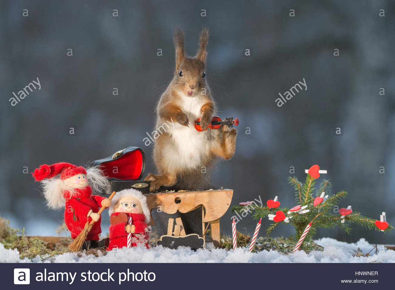 Eichhörnchen stehend mit einer Geige, Weihnachten Puppe und Kerzen ...