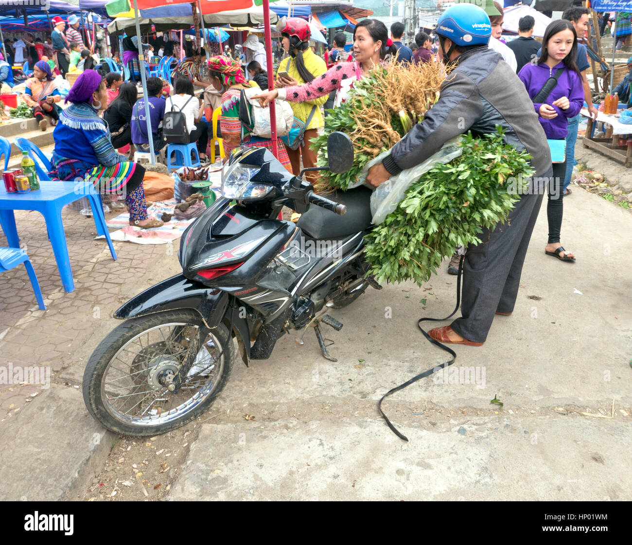 Motorradfahrer entladen geernteten Sellerie in Bac Ha Farmers Market, Motorrad, Mode Of Transportation, Bac Ha. Stockbild