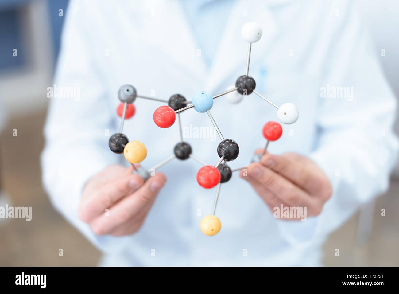 Wissenschaftler im weißen Kittel, molekulare Modell hält Stockbild