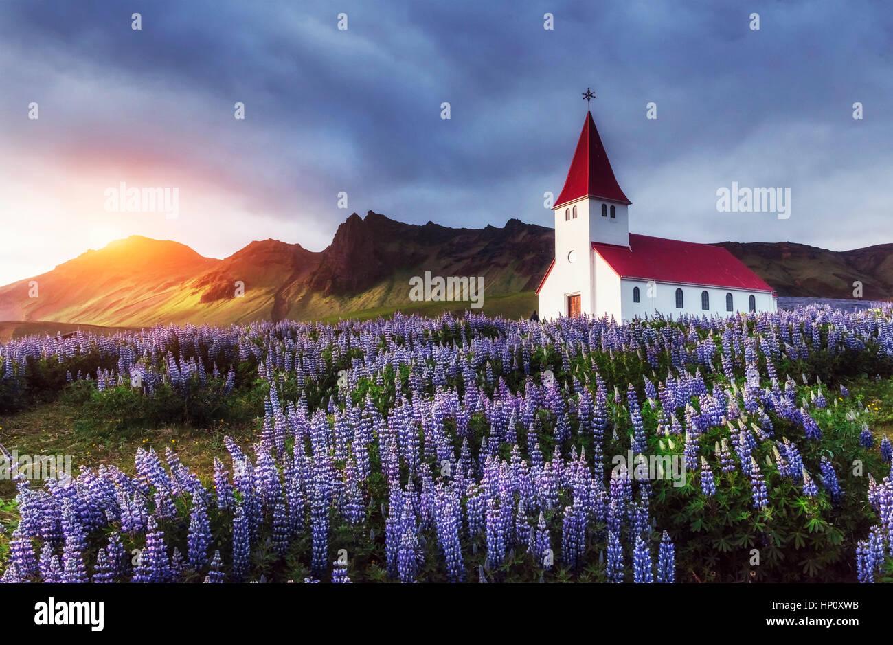 Die evangelische Kirche in Vik. Island. Stockbild