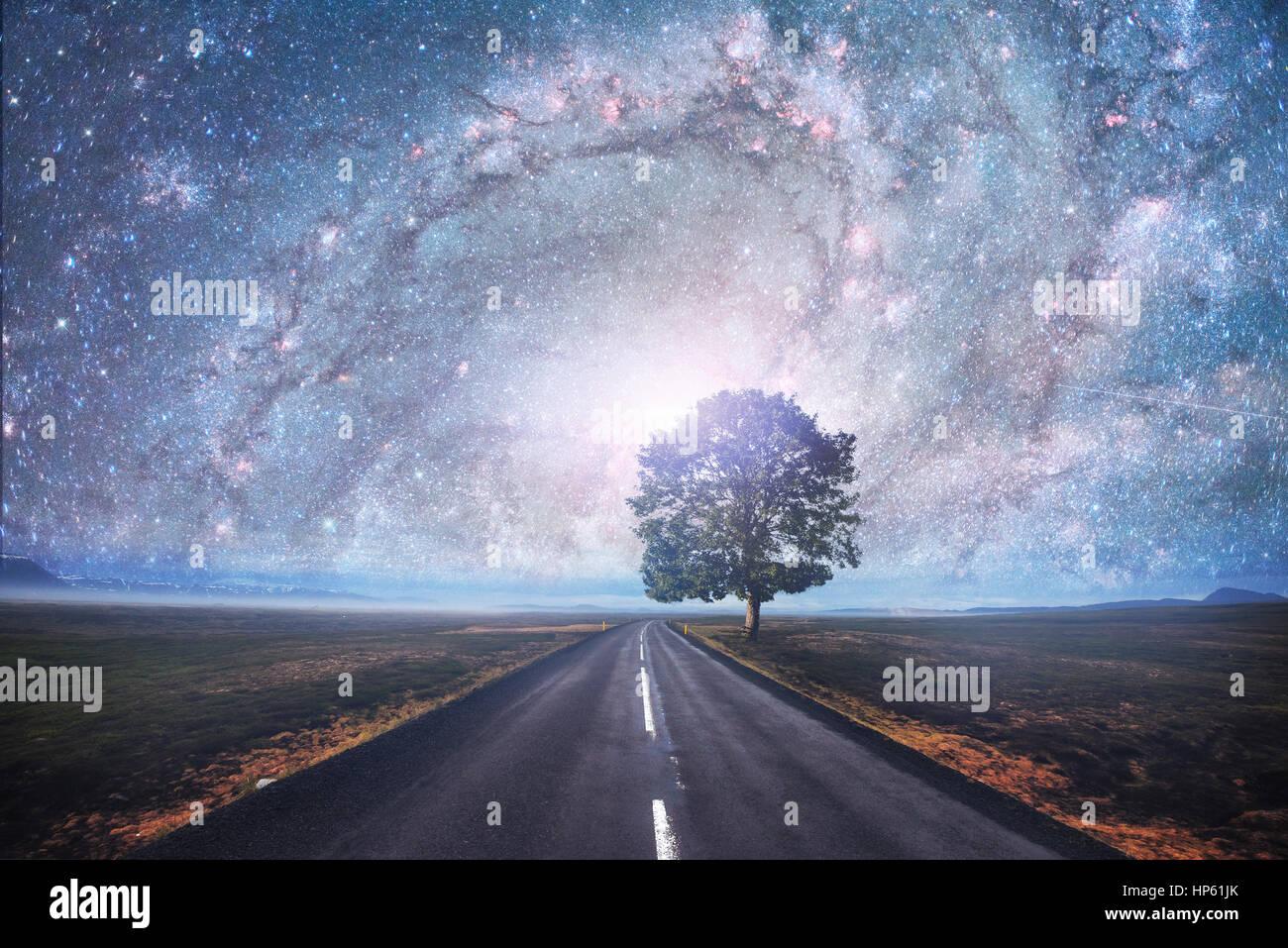 Asphaltierte Straße und einsame Baum unter dem sternenklaren Nachthimmel Stockbild