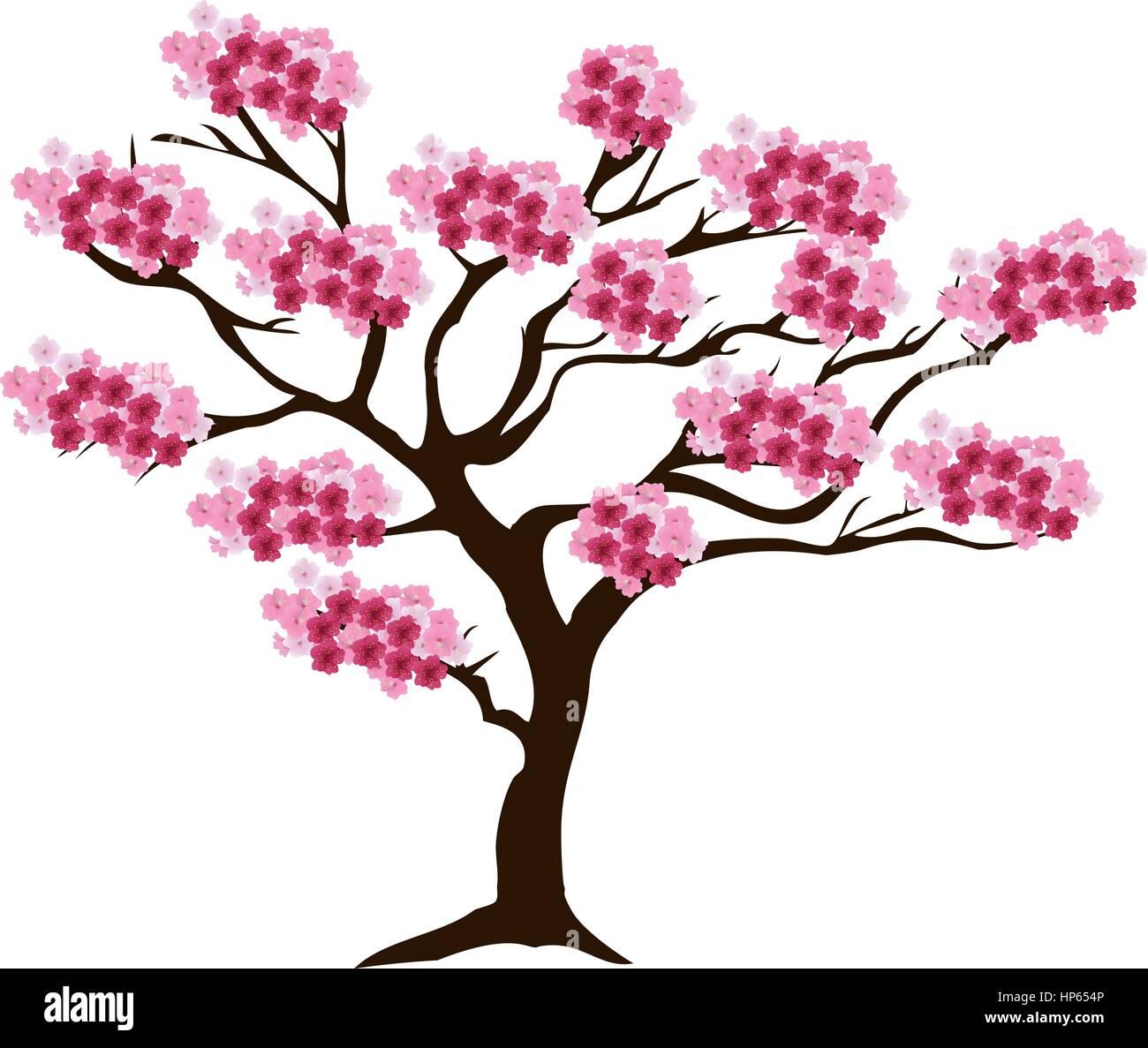 vektor illustration von einem kirschbaum in bl te sacura baum ein japanisches symbol vektor. Black Bedroom Furniture Sets. Home Design Ideas