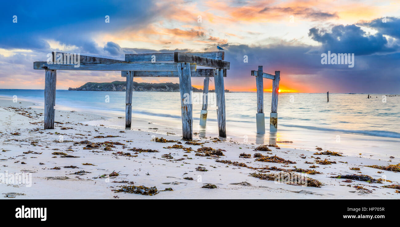 Hamelin Bay Jetty, Western Australia, Australia Stockbild