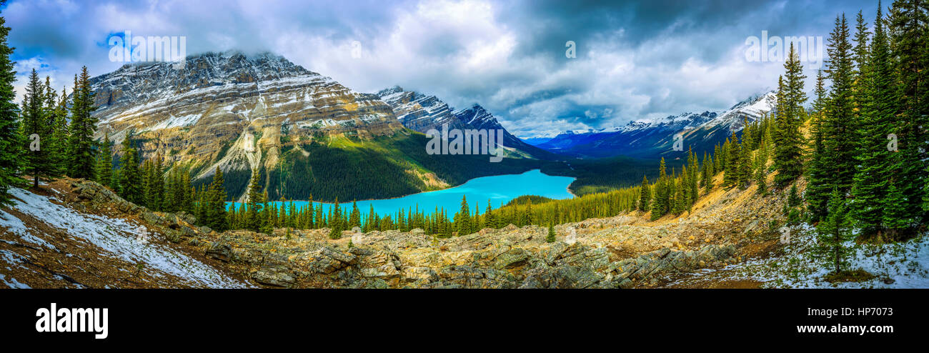Peyto Lake Panorama Stockbild