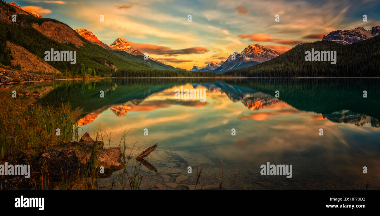 Wasservögel Lake, Alberta, Kanada Stockbild