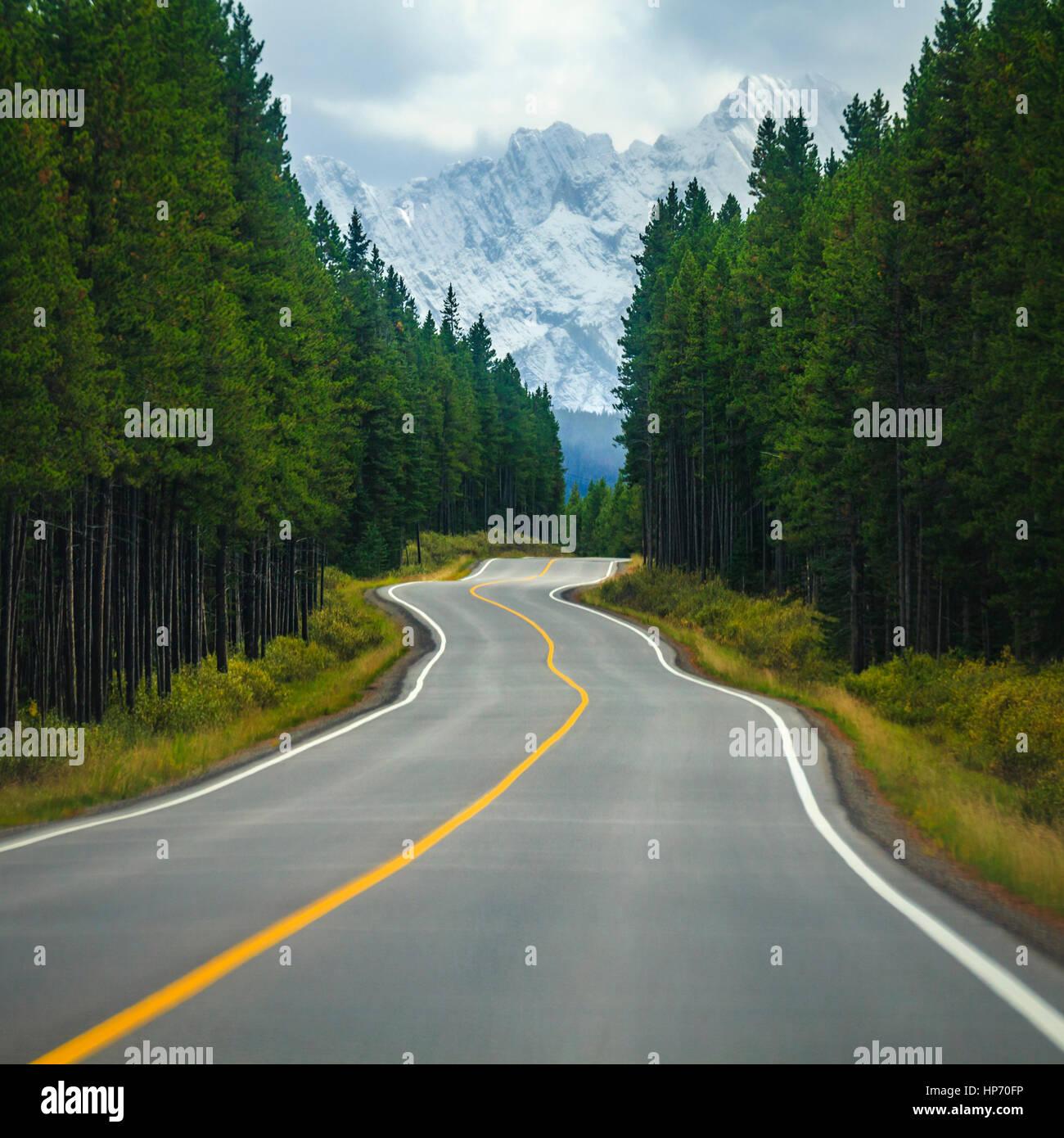die perfekte lange-Boarding-Straße in Kanada Stockbild