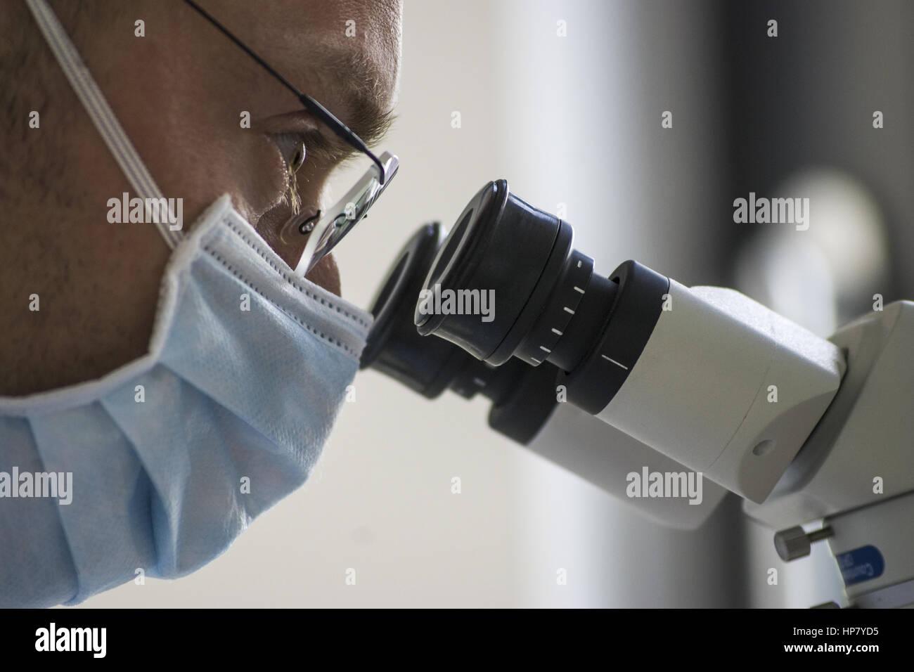 Mikroskop stockfotos & mikroskop bilder alamy