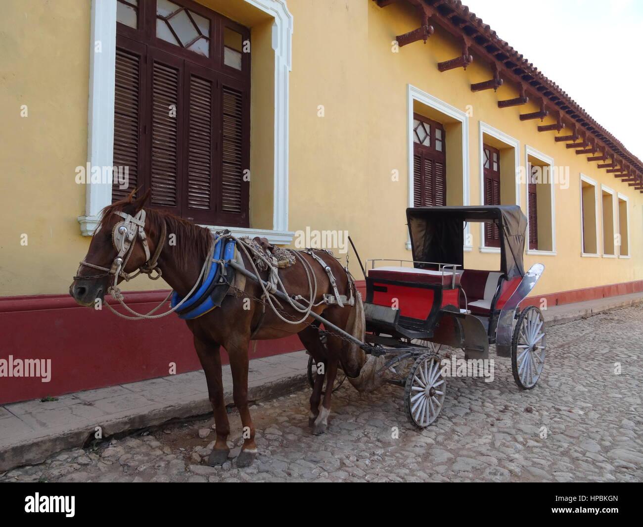 Pferd und Wagen auf einer gepflasterten Straße in Trinidad, Kuba Stockbild