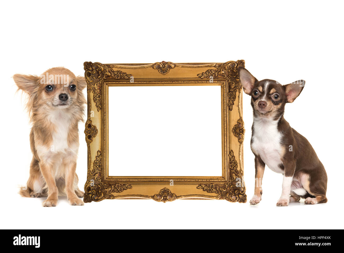 Goldene viktorianischen Bilderrahmen isoliert auf einem weißen ...